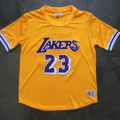 *LeBron James M&N Los Angeles Lakers Sleeved Jersey - Super AAA Quality